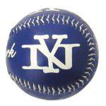 New York Blue Baseball